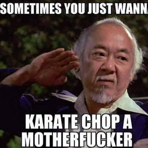 karate chop motherfucker meme